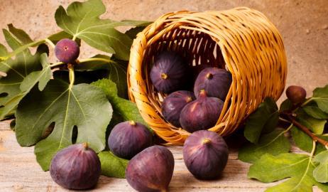 Τα φρούτα των αρχαίων Ελλήνων
