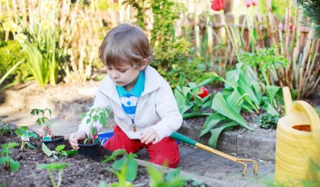 Μικροί καλλιεργητές εν δράσει!