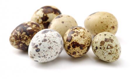 Αυγά ορτυκιού, μικροσκοπικοί γίγαντες διατροφικής αξίας