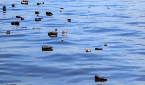 Υπάρχει πλαστικό στο θαλασσινό αλάτι;
