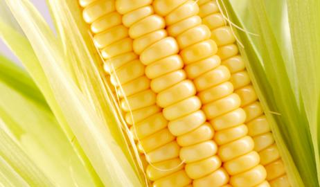Allulose: το νέο φυσικό γλυκαντικό