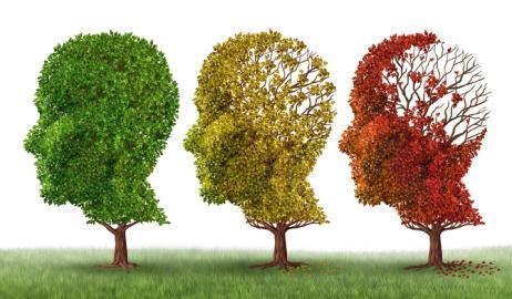 Η κακή διατροφή συμβάλλει στην ανάπτυξη του Alzheimer