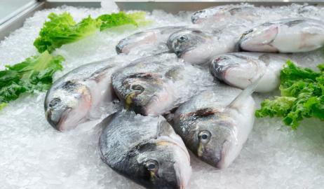 Γιατί τα κατεψυγμένα ψάρια μπορεί να είναι καλύτερα από τα φρέσκα