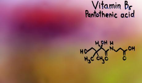 Οφέλη και πηγές της βιταμίνης Β5