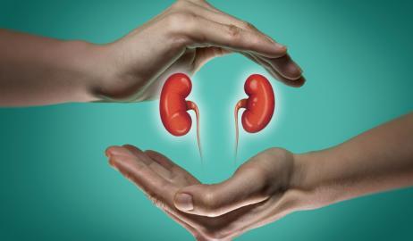 Προστατεύοντας τα νεφρά μας