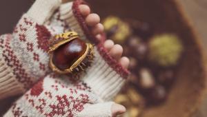 Κάστανο, ένας χειμωνιάτικος θησαυρός