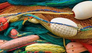 Ψάρια και θαλασσινά, το συνώνυμο του καλοκαιριού