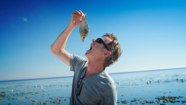 Η μόλυνση των θαλασσών επηρεάζει το ανοσοποιητικό μας σύστημα