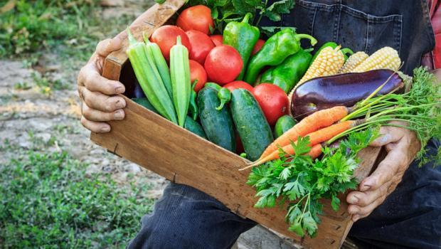 Γιατί τα βιολογικά λαχανικά πρέπει να αποτελούν μέρος της διατροφής μας
