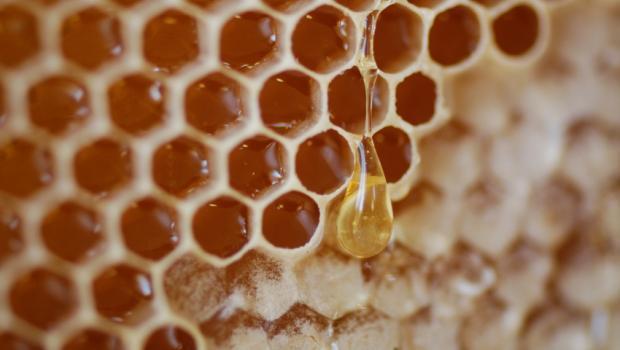 Το μέλι και τα γλυκύσματα των αρχαίων Ελλήνων