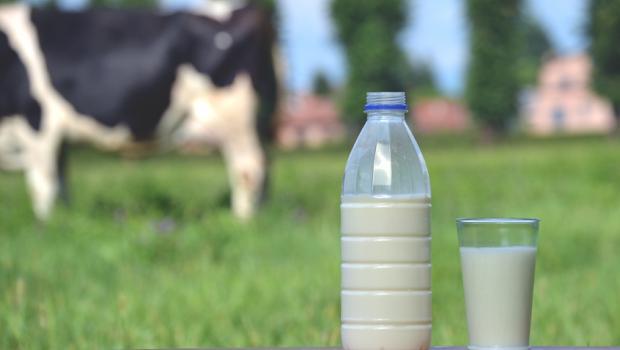 Υποχρεωτική σήμανση της χώρας προέλευσης σε κρέας και γάλα