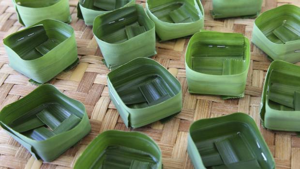 Μπολ τροφίμων μιας  χρήσης από φύλλα;  Κι όμως γίνεται!