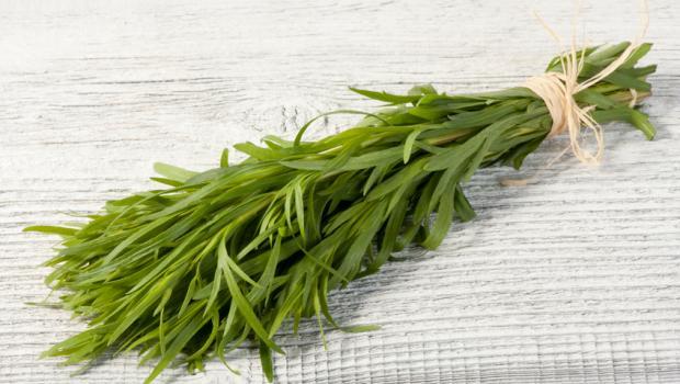 Εστραγκόν, το αρωματικό βότανο από την μακρινή Μογγολία