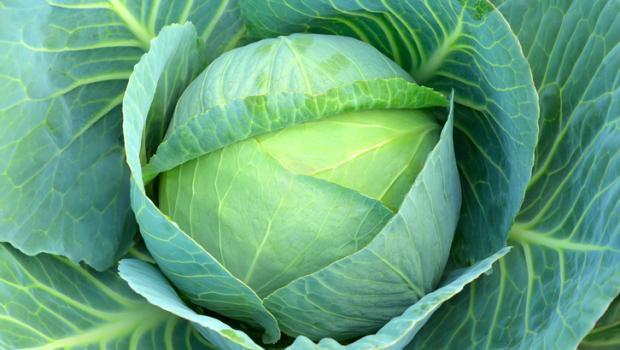 Ευεργετικές ιδιότητες του λάχανου που ίσως δεν γνωρίζετε