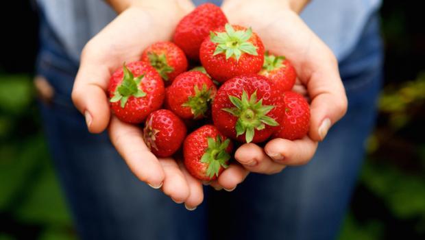 Εκχύλισμα  φράουλας αναστέλλει την εξέλιξη των καρκινικών κυττάρων του μαστού
