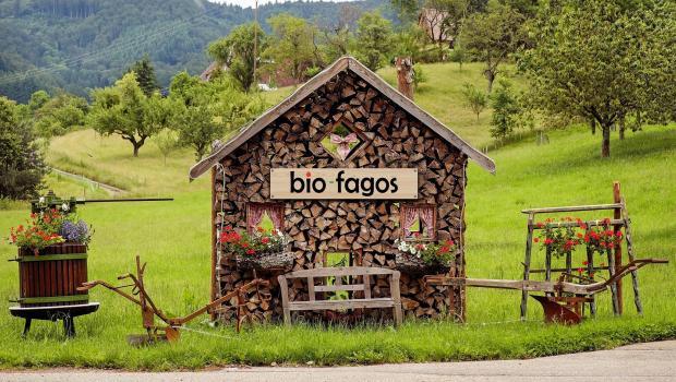 Super διαγωνισμός: Διεκδικήστε ένα καλάθι με βιολογικά προϊόντα από το Βio-fagos.gr!